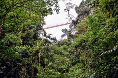 Arenal Hanging Bridges