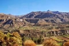 Dolina Colca