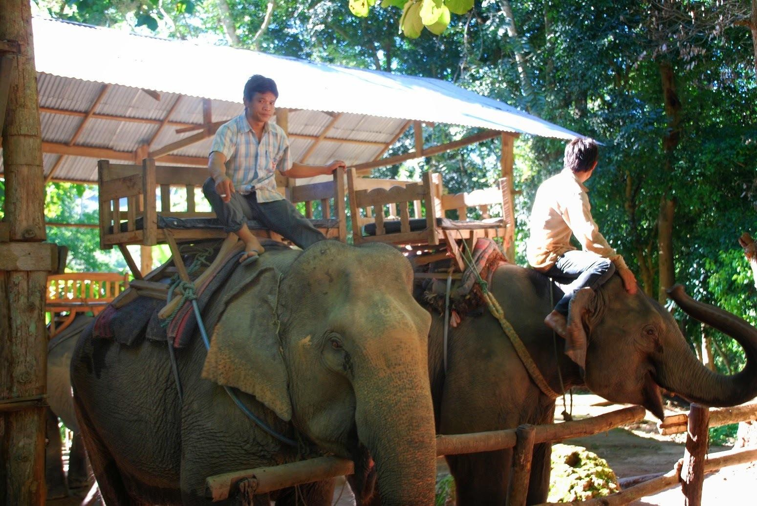 Laos - Trekking wokół Luang Prabang