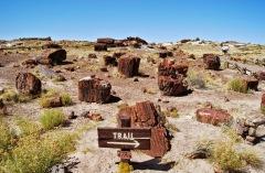 Arizona - Park narodowy Petrified Forest