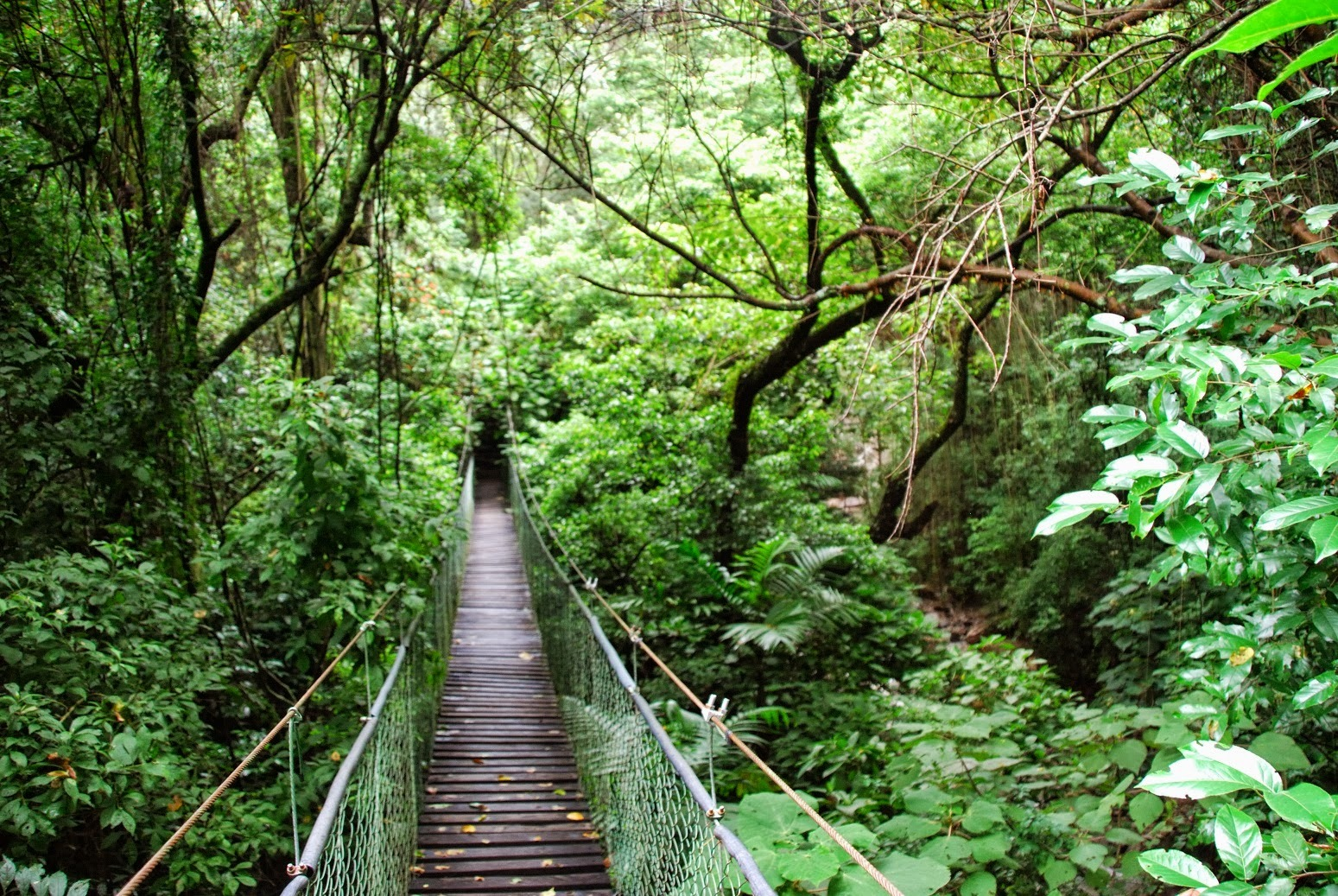Gwatemala - Panajachel - Reserva Natural de Atitlan