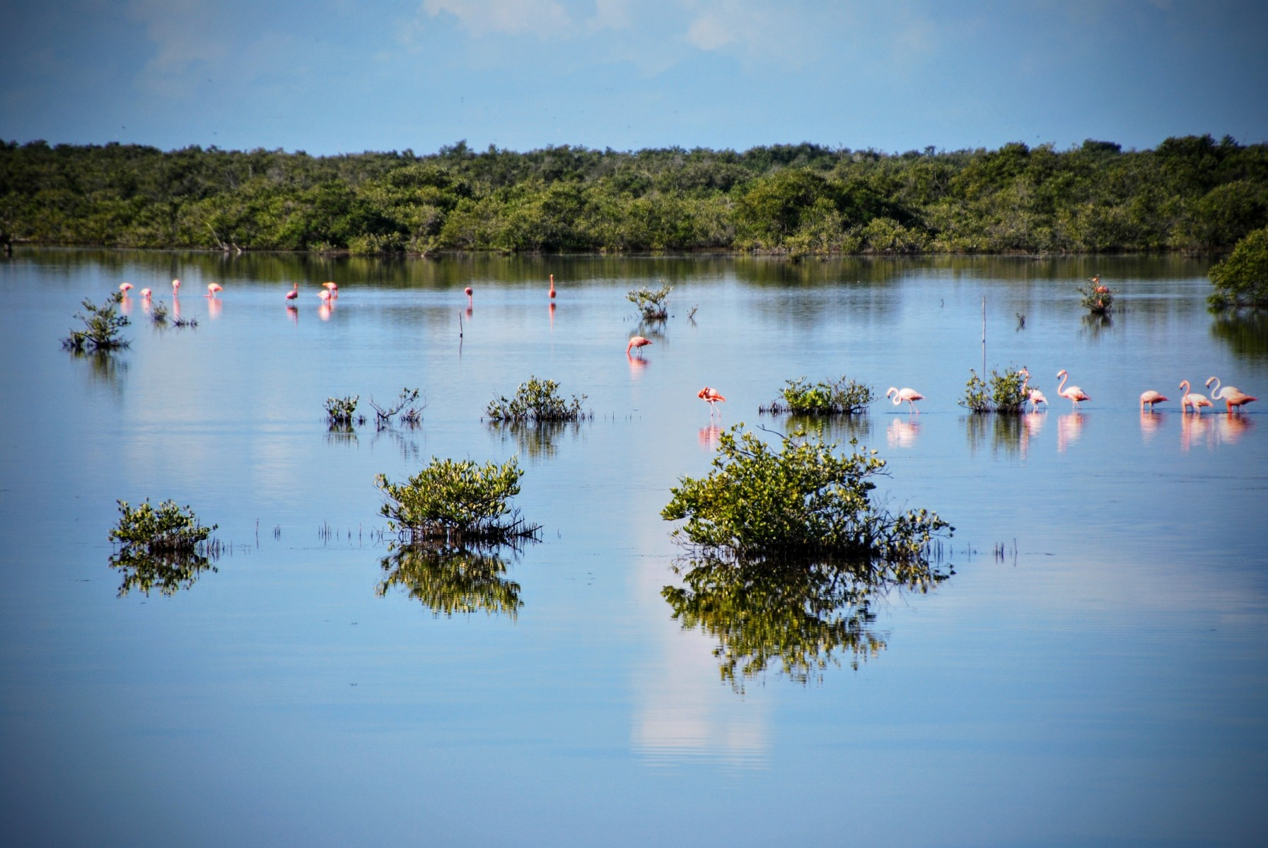 Parque Nacional Ciénaga de Zapata
