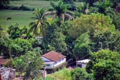 Valle de los Ingenios - Manaca Iznaga